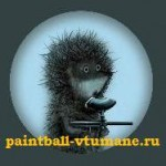 Пейнтбольный клуб «Ёжики в тумане»
